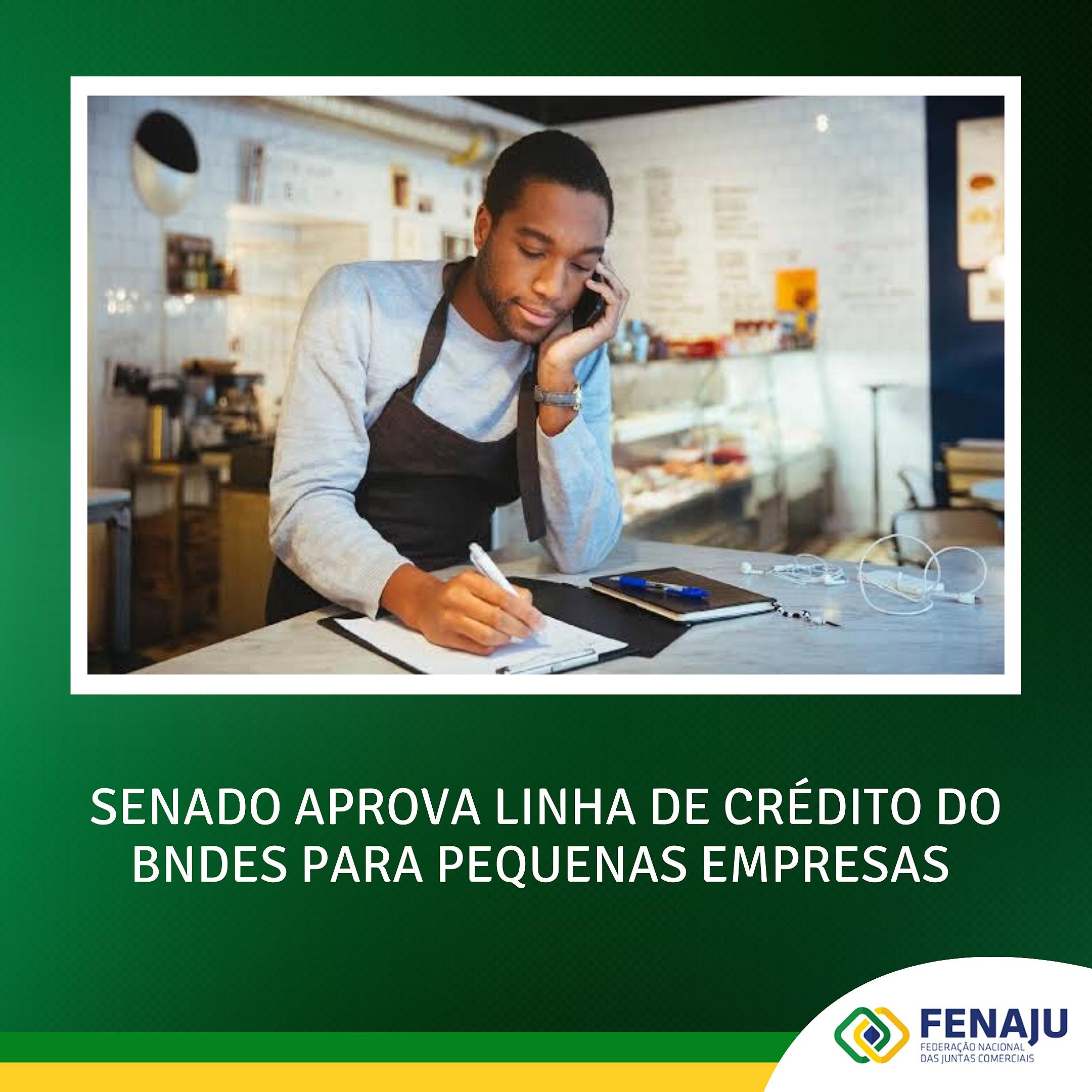 SENADO APROVA LINHA DE CRÉDITO DO BNDES PARA PEQUENAS EMPRESAS